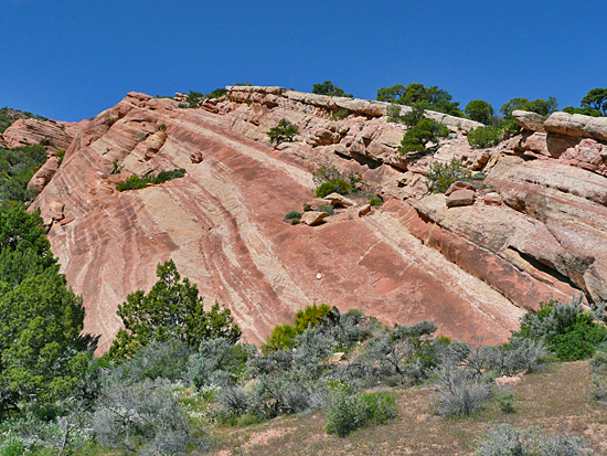 Syncline in Colorado National Monument